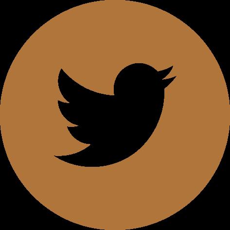 twitter logo link